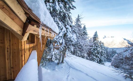 cabane-insolite-chartreuse